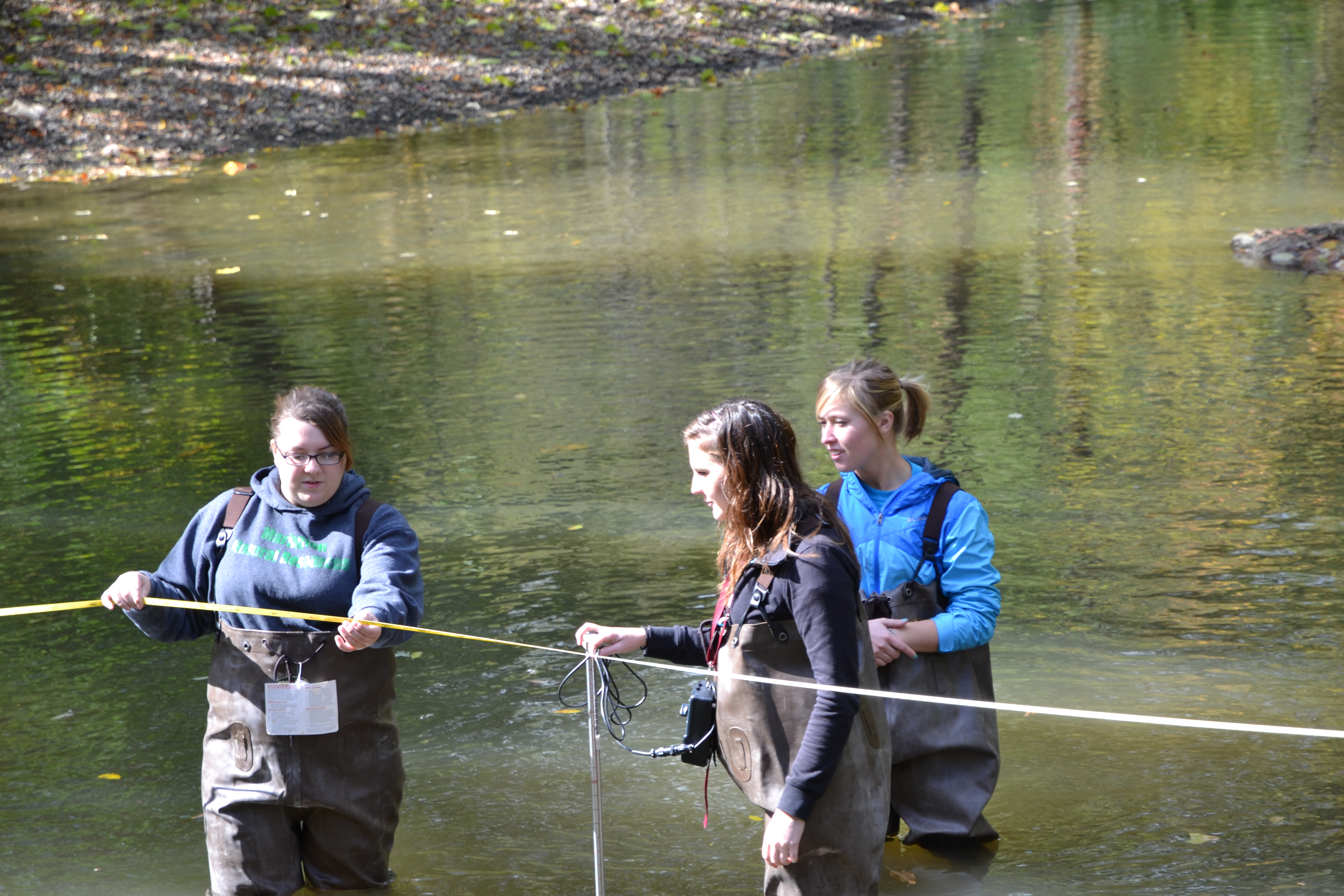 Enviro science students in the water